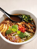 Assam Laksa. A bowl of assam laksa noodle stock photography