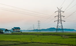 Assam rural landscape, fields Stock Photography