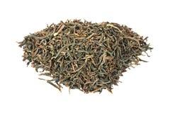 assam svart indisk tea Fotografering för Bildbyråer