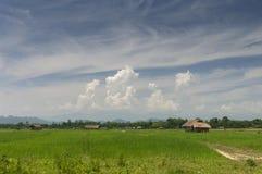 Assamese hus nära Brahmaputra River, Assam, Indien arkivbilder