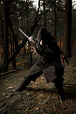 Assassin in the deep forest. Assassin with two swords in the deep forest Royalty Free Stock Image