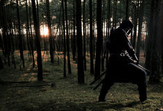 Assassin in the deep forest Stock Images