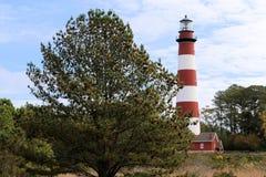 Assateague Insel-Leuchtturm lizenzfreie stockfotografie