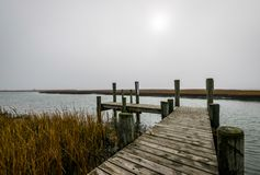 Assateague Island, Maryland during a Warm Fall Day. / royalty free stock image
