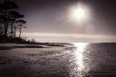 Assateague Island. Virginia, from the shoreline of Chincoteague Bay Royalty Free Stock Image