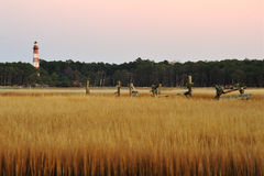 The Assateague Lighthouse and Marsh at dusk Royalty Free Stock Image