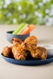 Asse as asas de galinha quentes com cervejas no jardim do bar Foto de Stock