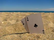 Asse im Sand Stockbilder