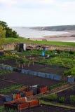 Assegnazione della spiaggia Fotografia Stock