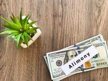 Assegno alimentare di pagamenti Dollari del mucchio con l'assegno alimentare ed i soldi del segno Concetto di separazione e di di fotografie stock