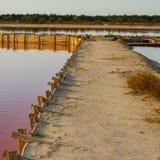 Asseguração de represas artificiais fotografia de stock royalty free