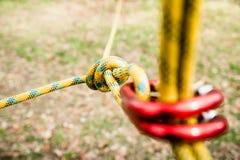 Asseguração segura da corda ao carabiner de escalada, nó no foco imagem de stock