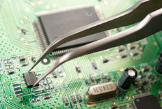 Assembling a circuit board. Close-up photo of pincer with microchip Stock Photography