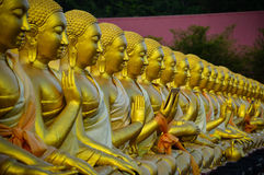 The Assembly of images of Buddha.  Royalty Free Stock Photography