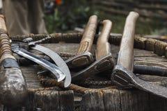 Assen en sabels op het vat stock afbeeldingen