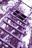 Assento alto na floresta Imagens de Stock Royalty Free