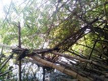 Assento de bambu Fotografia de Stock Royalty Free