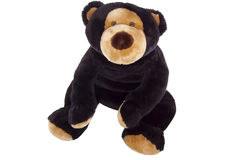 Assento do urso da peluche Fotografia de Stock Royalty Free