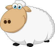 Assento feliz dos carneiros Fotografia de Stock Royalty Free