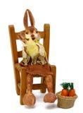 Assento mais papier dos coelhos na palha da cadeira Imagens de Stock Royalty Free
