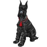 Assento preto do cão do Schnauzer gigante do vetor Imagem de Stock Royalty Free