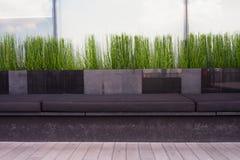 Assento verde Imagens de Stock