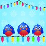 Assentos dos pássaros no fio da luz de Natal Imagens de Stock