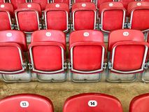 Assentos plásticos vermelhos brilhantes em um estádio Fotos de Stock Royalty Free