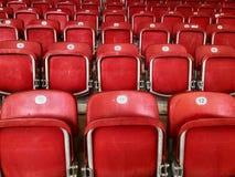 Assentos plásticos vermelhos vazios em um estádio Fotos de Stock