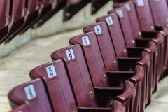 Assentos verdes do estádio Fotos de Stock