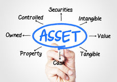 Asset Royalty Free Stock Images