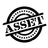 Asset rubber stamp Royalty Free Stock Photo
