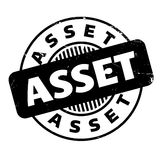 Asset rubber stamp Stock Image