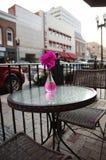 Assez dans le rose Photo stock