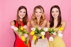 Assez, trio gentil et avec du charme des filles dans des robes, ayant coloré Photos stock