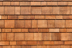 Assicelle del cedro Fotografie Stock Libere da Diritti