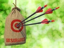 Assicurazione - frecce colpite nell'obiettivo Immagine Stock