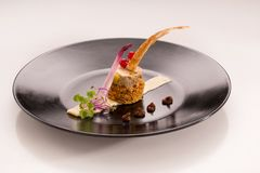 Assiette gourmet with foie gras on gingerbread. On a plain background Royalty Free Stock Photography