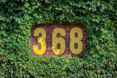 368 assinam dentro videiras Fotos de Stock Royalty Free