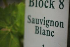 Assine dentro um vinhedo Sauvignon Blanc fotografia de stock