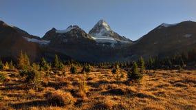 Assiniboine-Berg bei Sonnenuntergang im Fall Lizenzfreies Stockbild