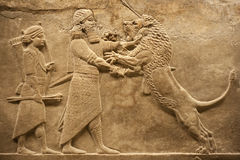 assirian jaktlionskrigare Arkivfoton