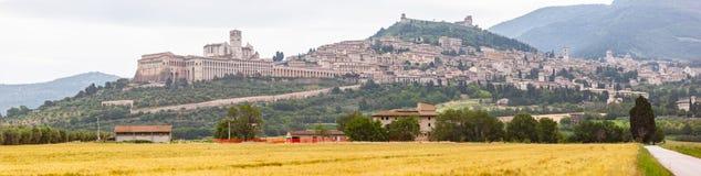 Assisi в панораме поля Италии Умбрии золотой стоковые изображения rf