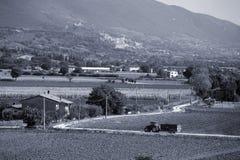 assisi Италия umbria Стоковая Фотография RF