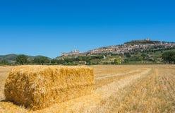 Assisi, один из самого красивого маленького города в Италии Горизонт деревни от земли Стоковые Изображения