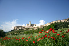 Assisi in de lente royalty-vrije stock foto's