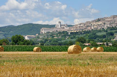 Assisi-Kathedralenlandschaft Stockfotografie