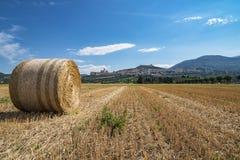 Assisi-Landschaft Stockfotografie
