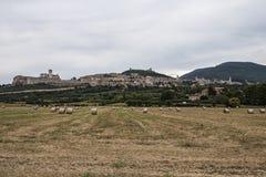 Assisi-Landschaft Lizenzfreie Stockfotos