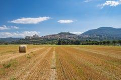 Assisi-Landschaft Lizenzfreie Stockfotografie